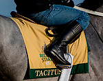 June 7, 2019 : Tacitus waits to gallop on the main track as horses prepare for the Belmont Stakes on Belmont Stakes Festival Weekend at Belmont Park in Elmont, New York. Scott Serio/Eclipse Sportswire/CSM