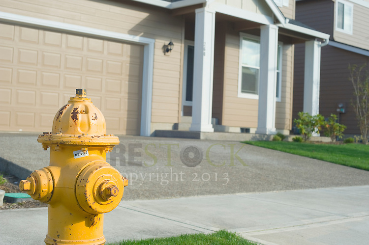 Fire Hydrant in front of Tan House