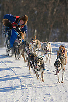 Musher Nathan Sterling, 2007 Limited North American Championship Sled dog race in Fairbanks, Alaska.