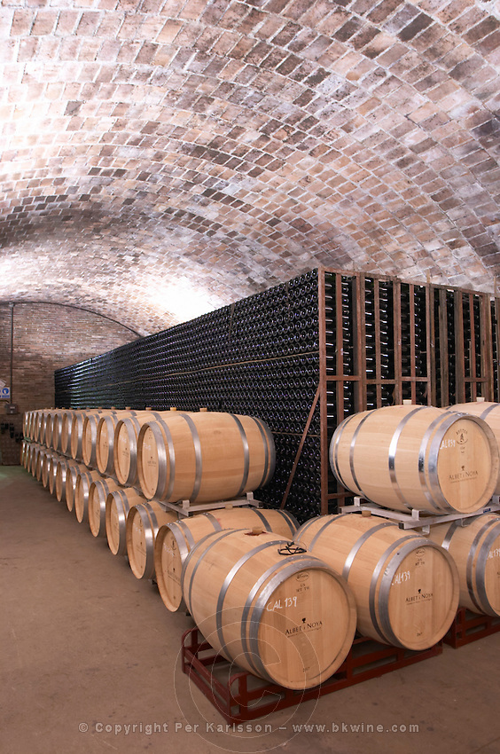 Oak barrel and bottle aging cellar. Albet i Noya. Oak barrel aging and fermentation cellar. Penedes Catalonia Spain