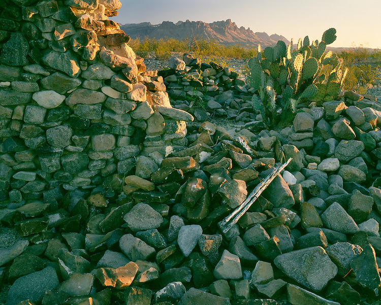 Morning light on the Johnson Ranch ruins on the River Road below the Chisos Mountains; Big Bend National Park; TX