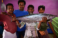 Fish and ice sellers with barracuda in Pulicat town, Pulicat Lake, Tamil Nadu, India