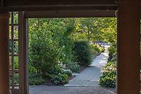 Path through Soest Herbaceous Display Garden, University of Washington Botanic Garden, Center for Urban Horticulture, Seattle