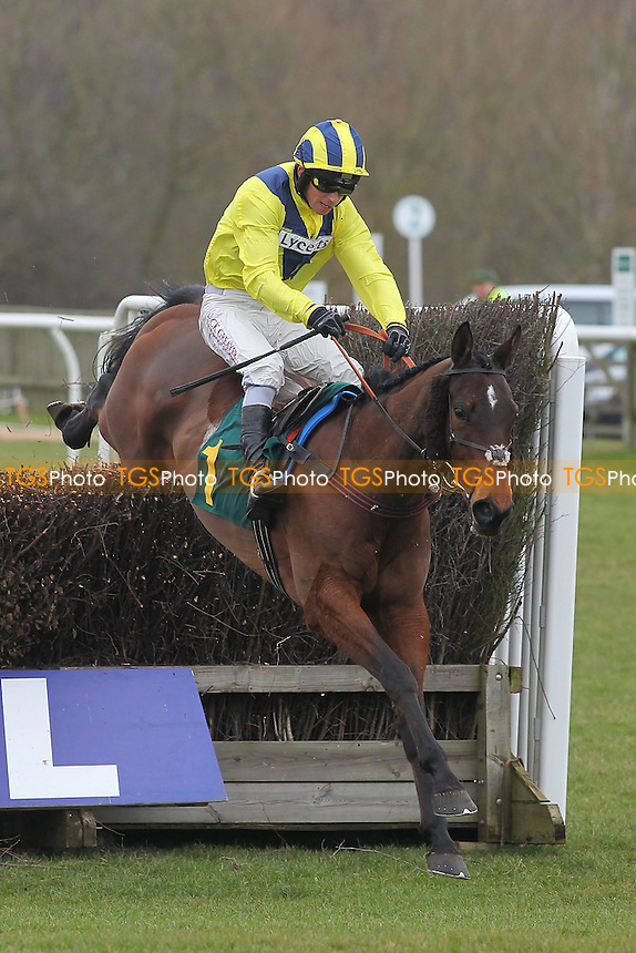Race winner El Dancer ridden by Leighton Aspell in jumping action in the Robert Case Memorial Novices Chase - Horse Racing at Fakenham Racecourse, Norfolk - 15/03/13 - MANDATORY CREDIT: Gavin Ellis/TGSPHOTO - Self billing applies where appropriate - 0845 094 6026 - contact@tgsphoto.co.uk - NO UNPAID USE.