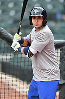 Shortstop Michael Paez (3) of the Columbia Fireflies takes batting practice before a game against the Augusta GreenJackets on Opening Day, Thursday, April 6, 2017, at Spirit Communications Park in Columbia, South Carolina. Columbia won, 14-7. (Tom Priddy/Four Seam Images)