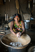 Xingu Indigenous Park, Mato Grosso State, Brazil. Aldeia Tuba Tuba (Yudja). Dabayu Yudja washing and squeezing manioc to remove poisonous juices.