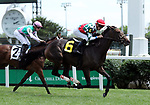 May 25, 2019 : Gentle Ruler (#6, Chris Landeros) wins the 7th running of the Keertana Stakes at Churchill Downs, Louisville, Kentucky. Owner Morsches Stable (Franz Morsches), trainer Ian R. Wilkes. By Colonel John x Winikins (Cozzene)  Mary M. Meek/ESW/CSM