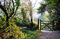 Woodland and footpath, Charlestown, St Austell, Cornwall....Copyright..John Eveson, Dinkling Green Farm, Whitewell, Clitheroe, Lancashire. BB7 3BN.01995 61280. 07973 482705.j.r.eveson@btinternet.com.www.johneveson.com