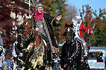 The Parading Arabians ride down Carson Street during the annual Nevada Day parade in Carson City, Nev. on Saturday, Oct. 29, 2016. Cathleen Allison/Las Vegas Review-Journal