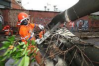 FOTO EMBARGADA PARA VEICULOS INTERNACIONAIS. SAO PAULO, SP, 23/10/2012, QUEDA ARVORE. Uma arvore de grande porte caiu e  bloqueou totalmente a Rua Barao de Iguape no bairro da Liberdade. Ninguem ficou ferido e nenhum veiculo foi atingido, nao ha previsao para liberacao da via. Luiz Guarnieri/ Brazil Photo Press.