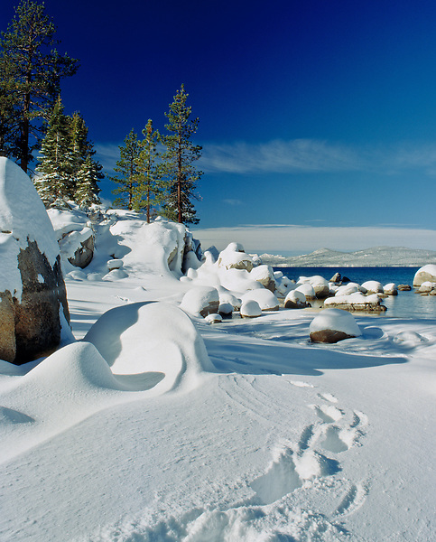 Lake Tahoe Scenic Winter Foot Prints