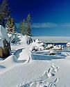 Lake Tahoe Scenic Winter Foot Prints