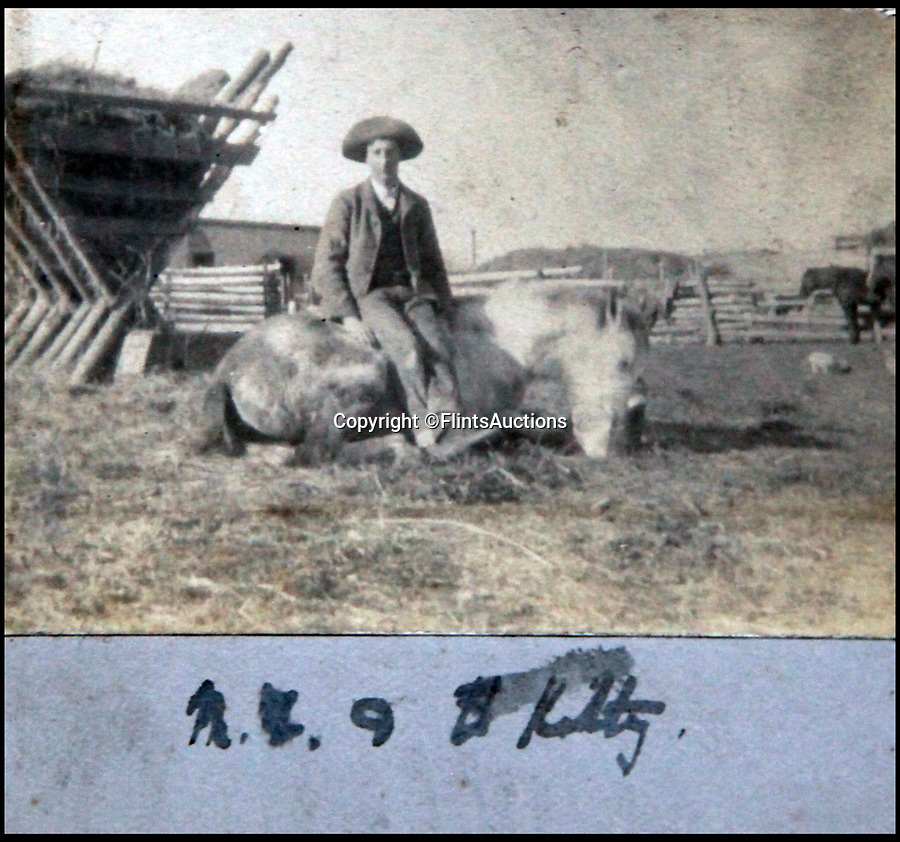 BNPS.co.uk (01202 558833)<br /> Pic: FlintsAuctions/BNPS<br /> <br /> Cowboy with his horse.<br /> <br /> Unseen album reveals the life of a cowboy in the real wild west...<br /> <br /> Fascinating previously unseen early photos of cowboys in the Wild West have come to light 130 years later.<br /> <br /> They show life on the ranches of Colorado and New Mexico in the vast expanses of the south west US in the 1880s.<br /> <br /> One dramatic image captures the thrilling moment a group of cowboys ride towards the camera with hats held aloft.<br /> <br /> The photos are thought to have been taken by a British farmhand who travelled Stateside in the late 19th century to earn a living.