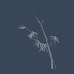 Bamboo stalk with young leaves, refined and tasteful oriental design based on Japanese Zen ink painting artwork illustration on faded dark blue background