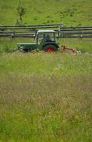 Cutting meadow grass, Imst district, Tyrol/Tirol, Austria, Alps.