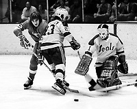Seals vs Red Wings Ted McAneeley and goalie Marv Edwards , Wings Tim Ecclestone or Larry Giroux. <br />