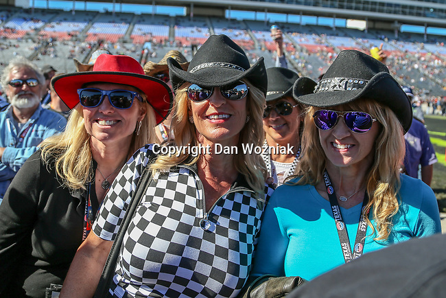 NASCAR fans in action during the Monster Energy NASCAR Cup Series, AAA Texas 500, race at the Texas Motor Speedway in Fort Worth,Texas.