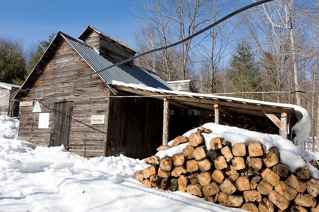 Traditional maple sugar shack for Maple Syrup making. food, agricultire, agricultural crop, Fortune Farms, Traditional maple sugar shack for Maple Syrup making. food, agriculture, agricultural crop, Fortune Farms, Lanark County, Ontario, Canada