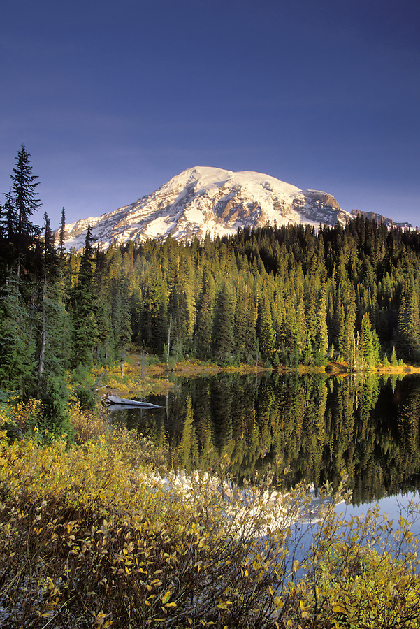 Mount Rainier reflected on Reflection Lake at sunrise, Reflection Lakes, Mount Rainier National Park, Lewis County, WA
