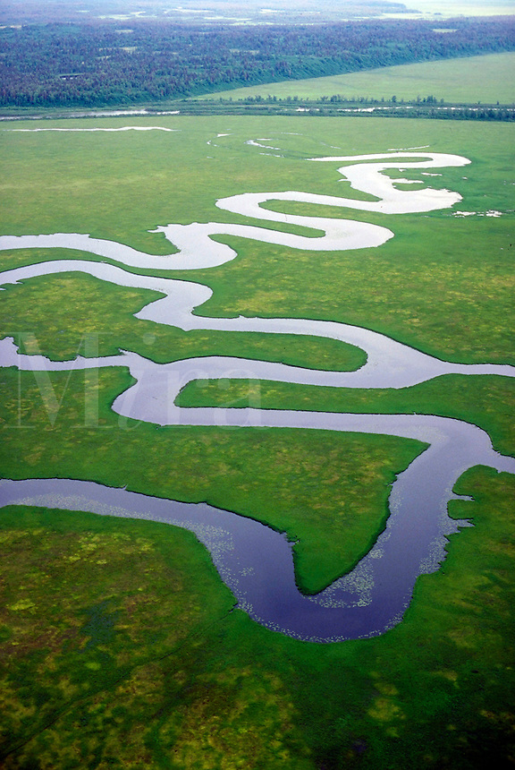 Aerial view of river & greenery, near Anchorage. Anchorage Alaska United States.