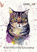 Simon, REALISTIC ANIMALS, REALISTISCHE TIERE, ANIMALES REALISTICOS, paintings+++++KatherineW_SplatterCat,GBWR15,#a#, EVERYDAY