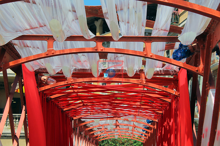 Girona Temps de Flors.<br /> 62a Exposicio de Flors, Monuments, Patis i Jardins.<br /> Pont Eiffel o de les peixateries velles.