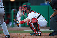 Ball State Cardinals catcher Griffin Hulecki (13) during a game against the Louisville Cardinals on February 19, 2017 at Spectrum Field in Clearwater, Florida.  Louisville defeated Ball State 10-4.  (Mike Janes/Four Seam Images)
