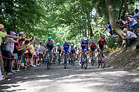 Julian Alaphilippe (FRA/Deceuninck - Quick-Step) at the front of the peloton up the infamous Muur van Geraardsbergen<br /> <br /> Stage 1: Brussels to Brussels (BEL/192km) 106th Tour de France 2019 (2.UWT)<br /> <br /> ©kramon