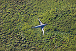 Bolivia, Beni Department, aerial view of crashed plane in savannah