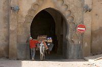 Afrique/Afrique du Nord/Maroc/Fèz: transport de marchandise en sens interdit a dos de mulet et porte fortifiée de la médina
