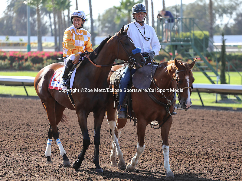 July 5, 2014 Tonito M. with Victor Espinoza aboard in the post parade for the Los Alamitos Derby at Los Alamitos Race Course in Cypress, CA. Zoe Metz/ESW/CSM