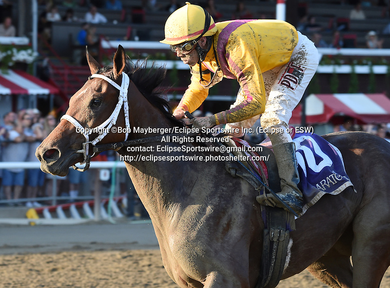 Cavorting (no. 10), ridden by Irad Ortiz Jr. and trained by Kiaran McLaughlin, wins the 68th running of the grade 2 Prioress Stakes for three year old fillies on September 6, 2015 at Saratoga Race Course in Saratoga Springs, New York. (Bob Mayberger/Eclipse Sportswire)
