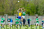 Castleisland Mart Junior Premier Club Championship Na Gaeil V Beaufort at Na Gaeil GAA Ground on Monday