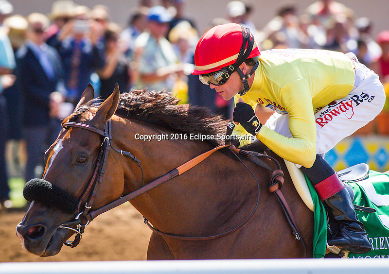 """DEL MAR CA - AUGUST 27: Masochistic #5, ridden by Tyler Baze win the Grade II """"Win and You're In"""" Pat O'Brien Stakes at Del Mar on August 27, 2016 in Del Mar, California. (Photo by Zoe Metz/Eclipse Sportswire/Getty Images)"""