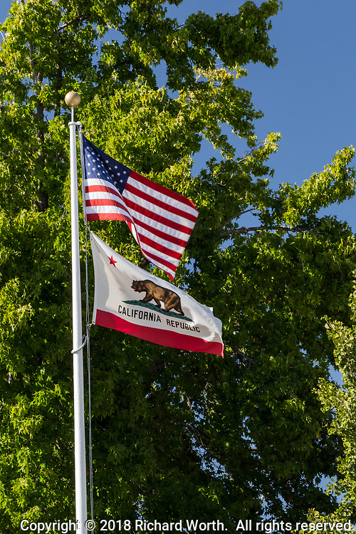 The U.S. Flag and the California state bear flag waving against a green tree background.