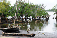 KENYA, Jimbo, mangrove forest / KENIA, Mombasa, Dorf Jimbo , teilweise abgeholzte Mangroven