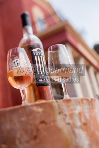 Europe/France/Provence-Alpes-Côte d'Azur/Alpes-Maritimes/Nice: Vignoble de Bellet,  Domaine de Toasc, Dégustation AOP Bellet rosé // /   Europe, France, Provence-Alpes-Côte d'Azur, Alpes-Maritimes, Nice: Bellet vineyards, Domain Toasc, AOC Bellet rosé tasting