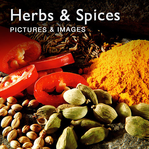 Food Pictures & images of fresh herbs & spices