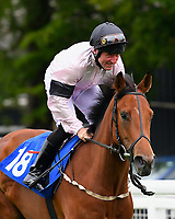 Swiss Miss ridden by John Egan goes down to the start <br /> of The Molson Coors Handicap  during Evening Racing at Salisbury Racecourse on 11th June 2019
