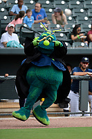 Mason, the mascot of the Columbia Fireflies, dresses up for Harry Potter Night before a game against the Greenville Drive on Saturday, May 26, 2018, at Spirit Communications Park in Columbia, South Carolina. Columbia won, 9-2. (Tom Priddy/Four Seam Images)