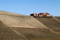 - Langhe hills panorama near Alba town....- panorama colline delle Langhe presso Alba