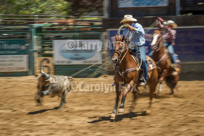 75th Amador County Fair, Plymouth, Calif.<br /> <br /> Brad Robenson team roping, Day 3