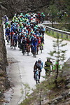 April 17th 2017, Kramsach, Austria; UCI Tour of the Alps mens cycling tour, Kufstein - Innsbruck, stage 1; pictured: The peloton<br /> &copy; Pierre Teyssot