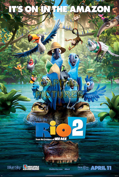 POSTER ART<br /> in Rio 2 (2014) <br /> *Filmstill - Editorial Use Only*<br /> CAP/FB<br /> Image supplied by Capital Pictures