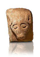 Anglo Saxon Medieval stone mythical animal head from Lindisfarne Abbey, Holy Island, England
