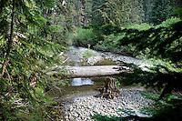 Mountain Stream; WA, Cascade Mountains; Wenatchee National Forest