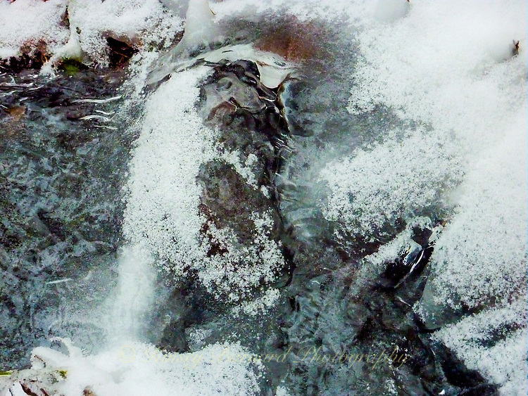 &quot;OLD MAN WINTER PRAYS&quot;<br />