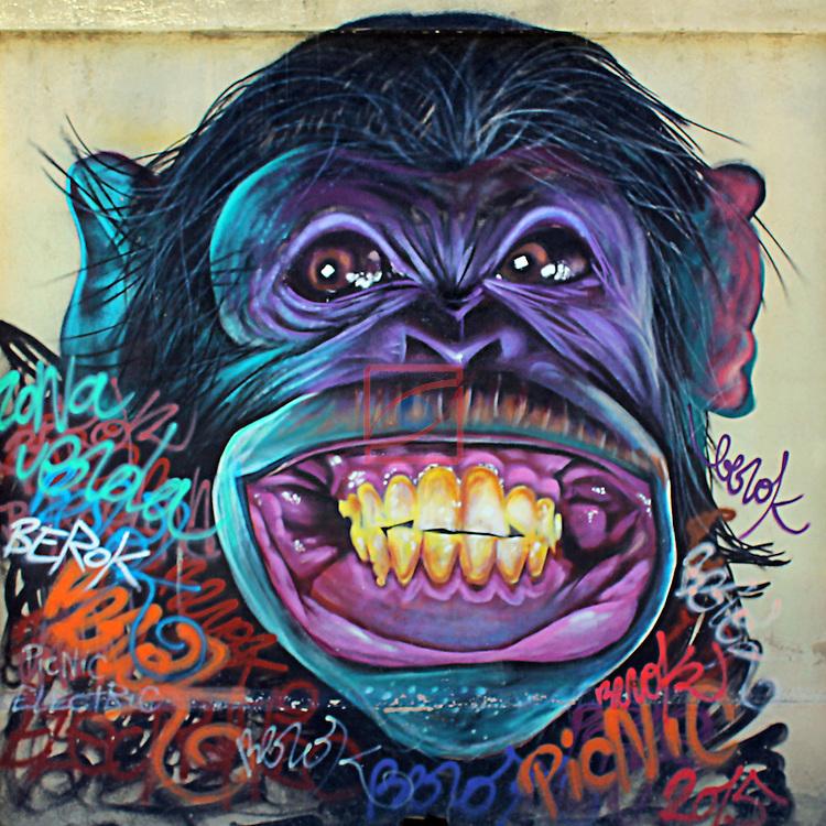 Street Art-Graffittis.<br /> Carrer de Sant Joan de Malta<br /> Barcelona-Poblenou (Sant Marti).