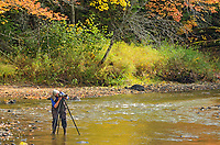 Photographer Tmi Reynolds hard at work in Dryberry Creek<br />