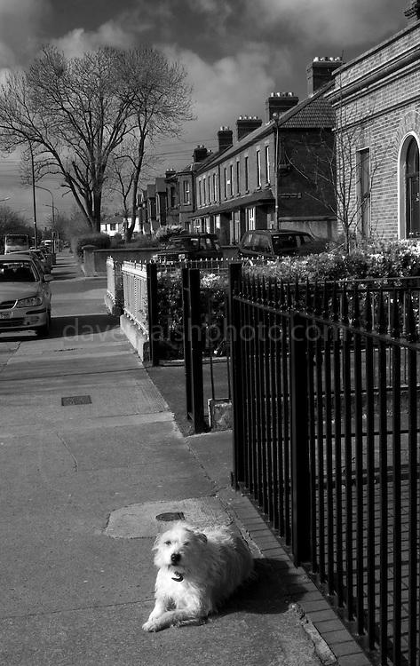 Clonliffe Road